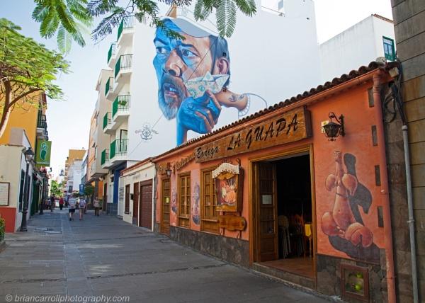 Wall Art in Puerto de la Cruz, Tenerife Part 1 of 2 by brian17302