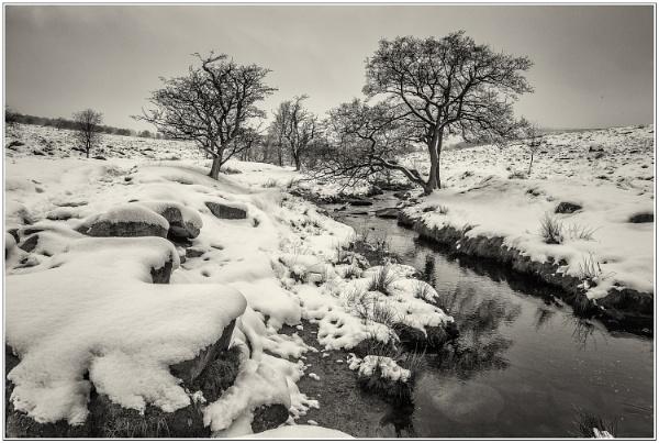 Snowy scene by Mactogo