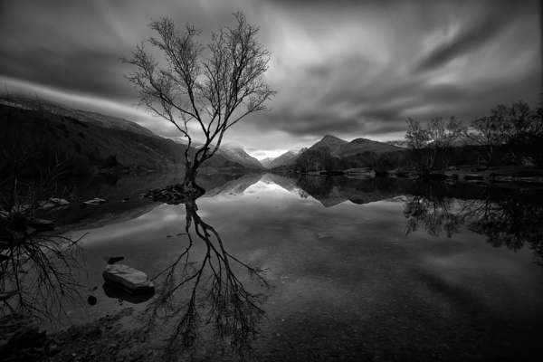 Dark Reflections by tolle13