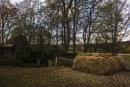 farmyard by hodgy73