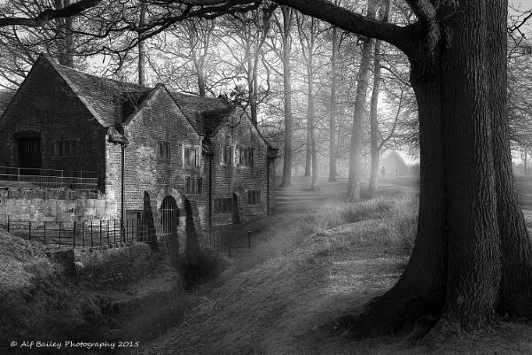 Mill Wood by Alffoto
