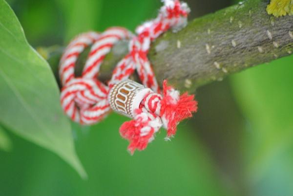 Wood & string... by Chinga