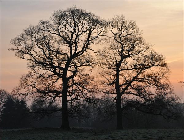 Lovely Sunrise by KentishChap