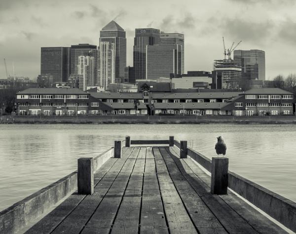 View Across the River by jumbozine