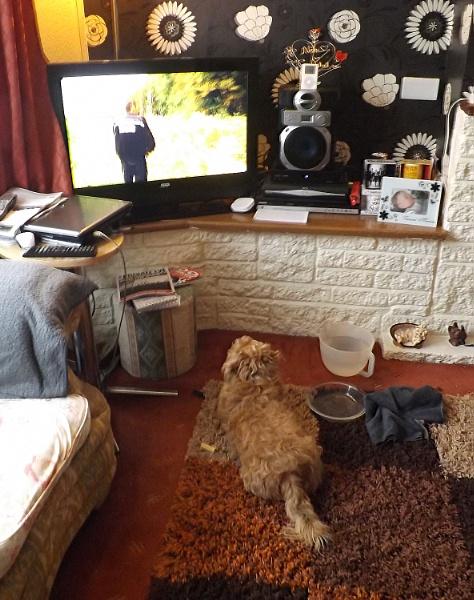 TV Addict by cjl47