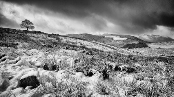 A Winter Wilderness by jeni