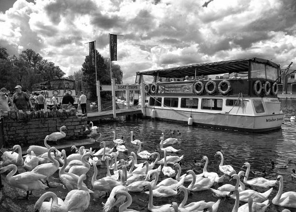 Boat trip by Joao_Lopes