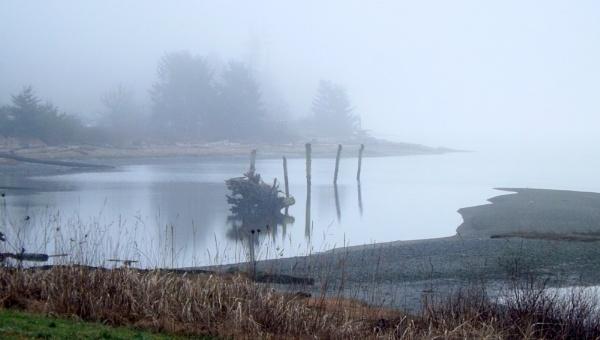 Foggy Comox Delta by tonyguitar