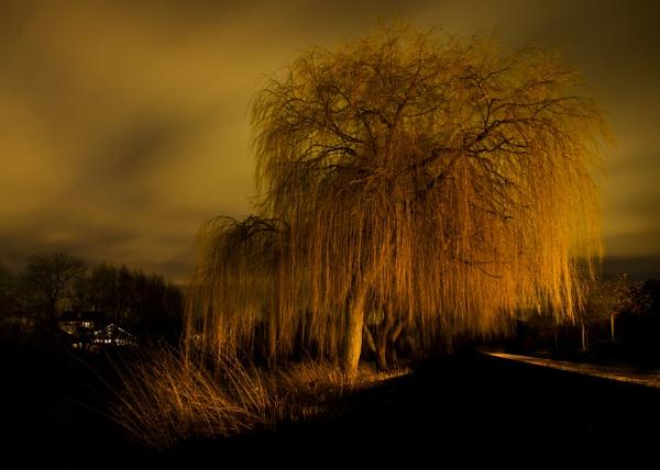 In the dark by lukara