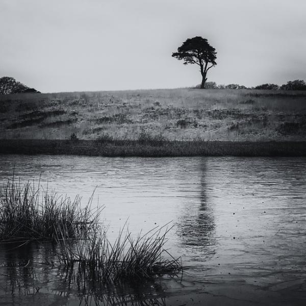 Priddy Pool 2 by Janboy