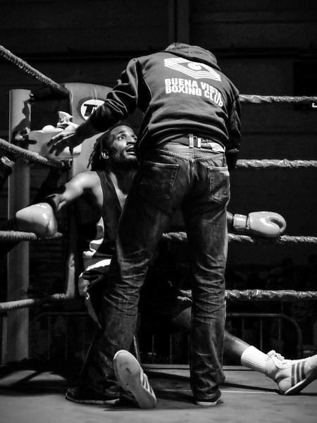 Series - Boxer\'s corner by Drummerdelight