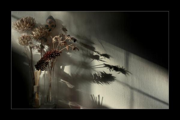 Tea and Tantalising Shadows by helenlinda