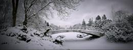 awakening winter II