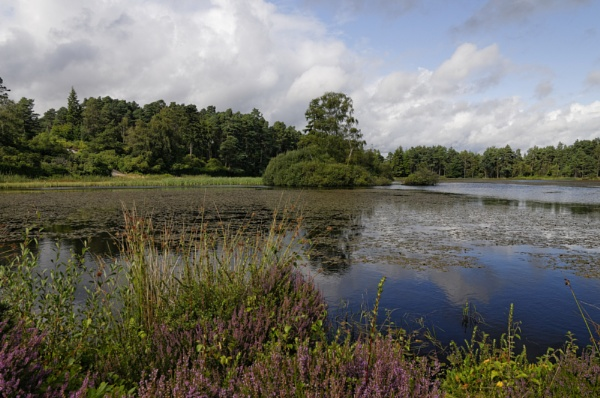 Cragside lake by ikett