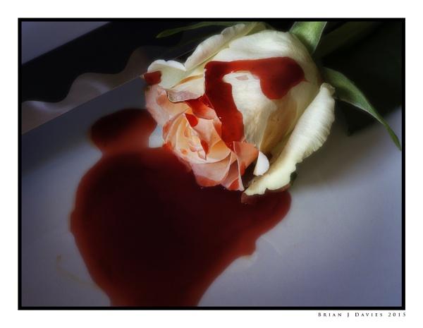 Bloody Valentine by Cynog