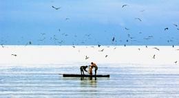 Pesca compartida