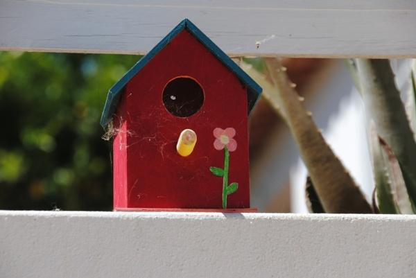Bird boxes... by Chinga