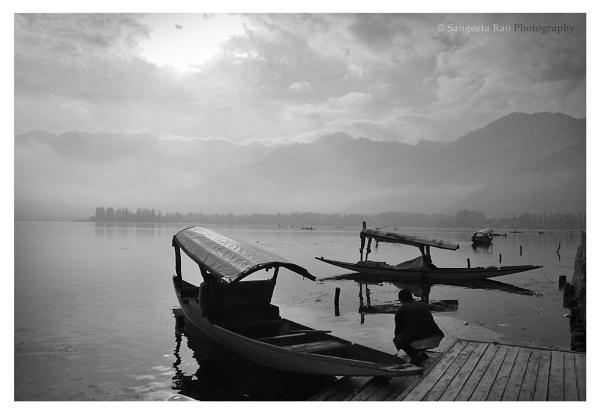 Shikaras on the Dal Lake in Kashmir by Realitybites