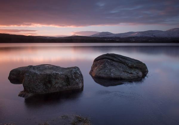 Early Morning Stillness, Loch Garten by hrsimages