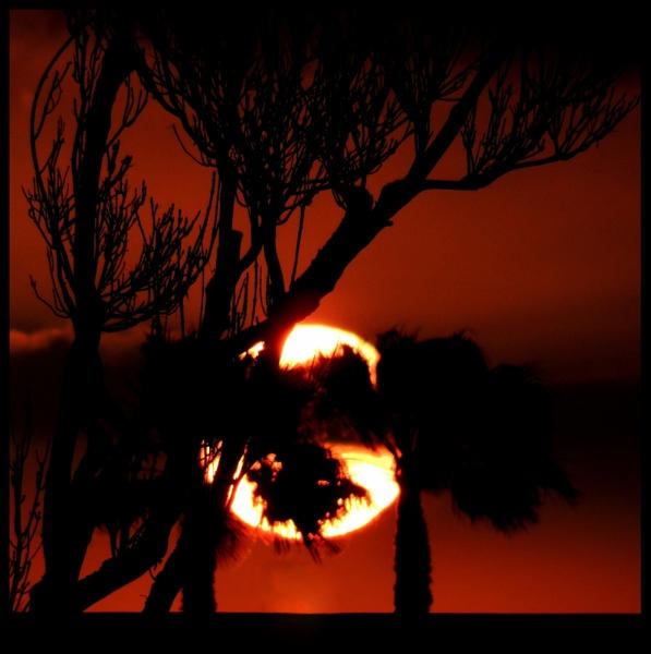 7-11 Sunset by Aldo Panzieri