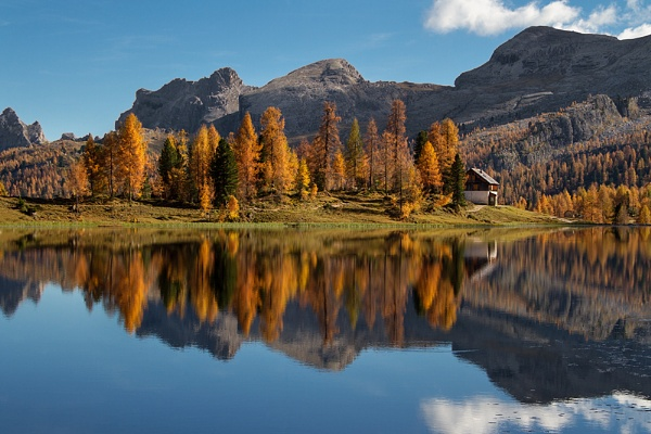 Fall colors by joze