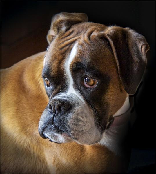Sad Maggie by Daisymaye