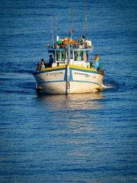 Gone fishing Brazil