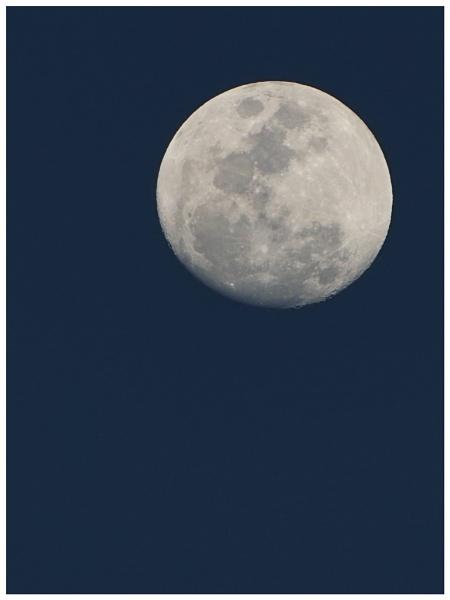 Caribbean Moon by TT999