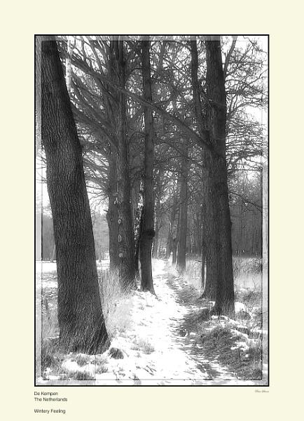 Wintery Feeling by Pentaphobian
