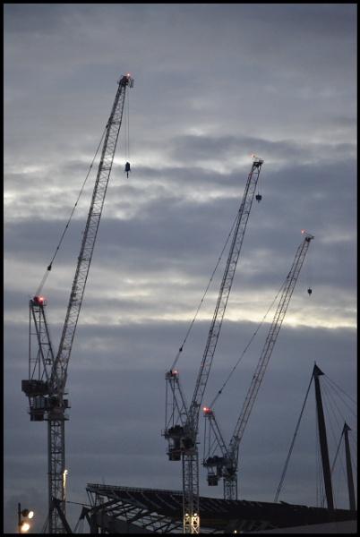 Cranes by tigger1971