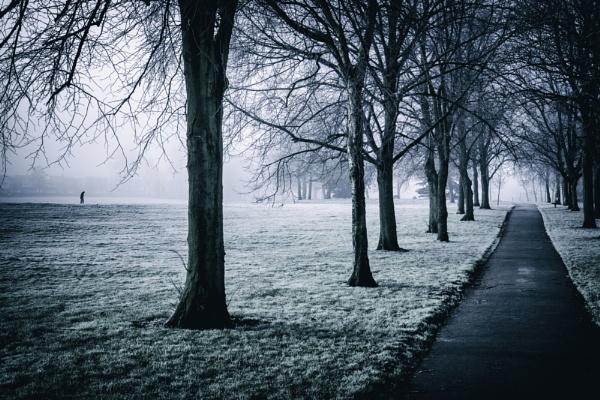 Foggy Morning by gowebgo