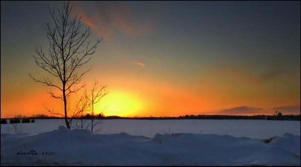 Winter Cornfield by doerthe