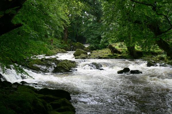 Afon Colwyn, Beddgelert by mikejmb