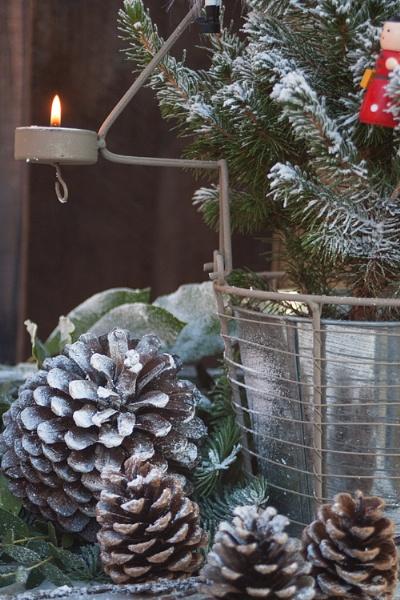 Christmas 2014 by roseyn