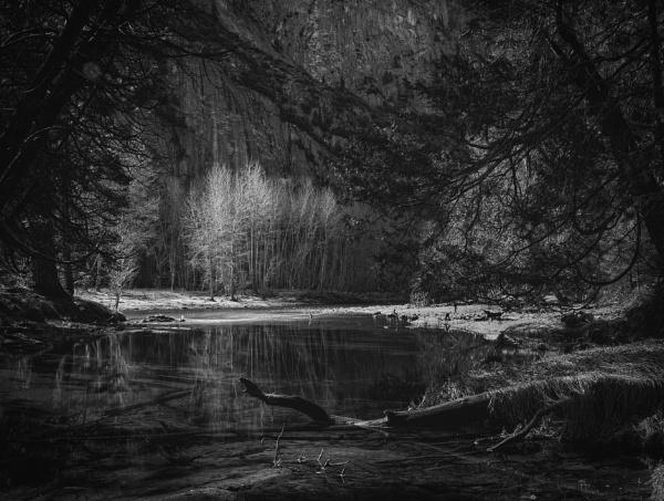 Yosemite Creek by mdconnors
