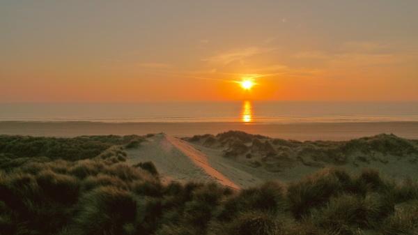 Ynyss Las  Ceredigion Wales by philwells