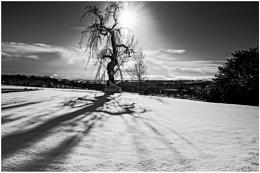 Weardale Winter View