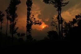 Sun set at tea estate