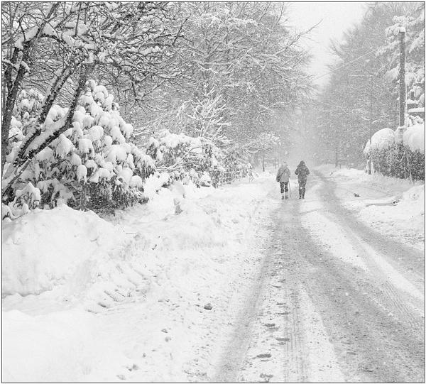 Winter by MalcolmM