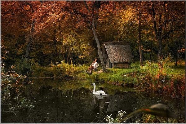 Swan tale by Cpt_Hun