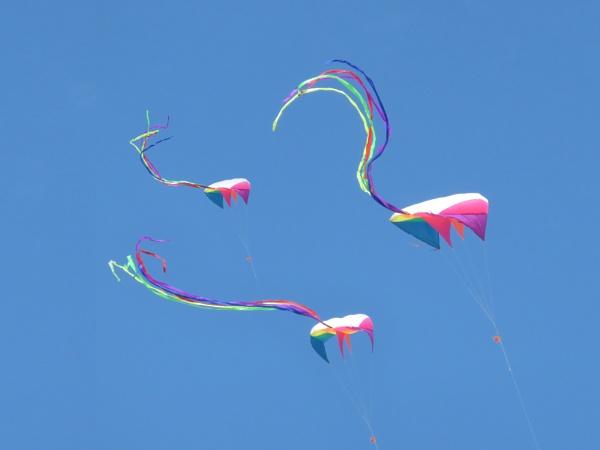 Kite Flight by Pretium