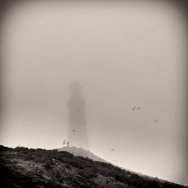 On The Misty Hill by robs
