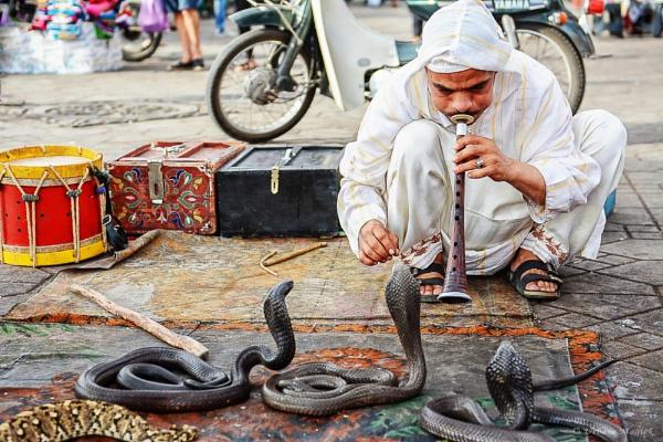 Snake Charmer, Old Marrakech. by UrbaneMagick