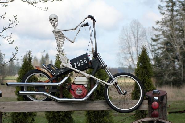 Biker  Ghost  Rider by tonyguitar