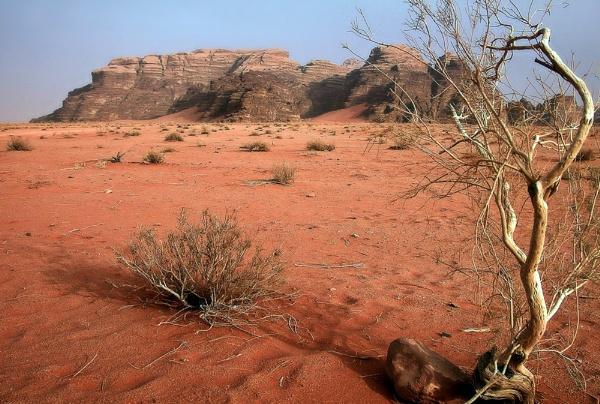 Red desert by MAK54