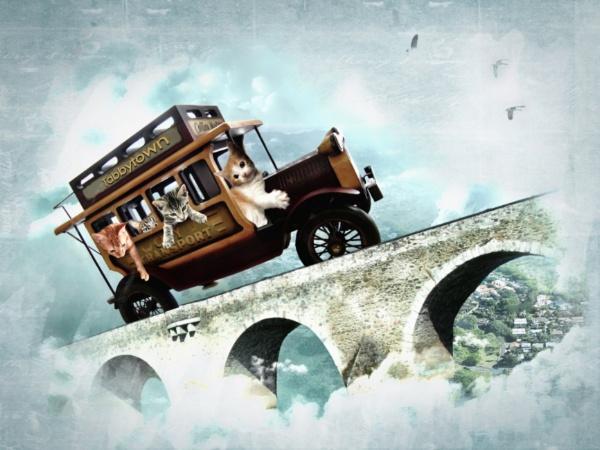 The Tabbytown Transport by cbrundage