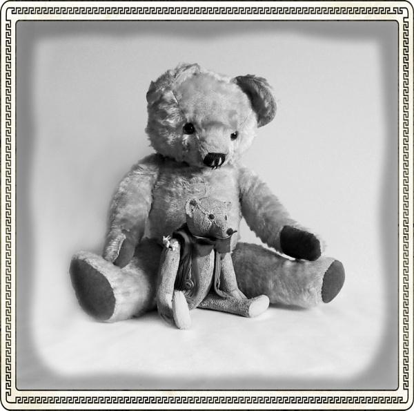 Two Teddies by PrunellaCara