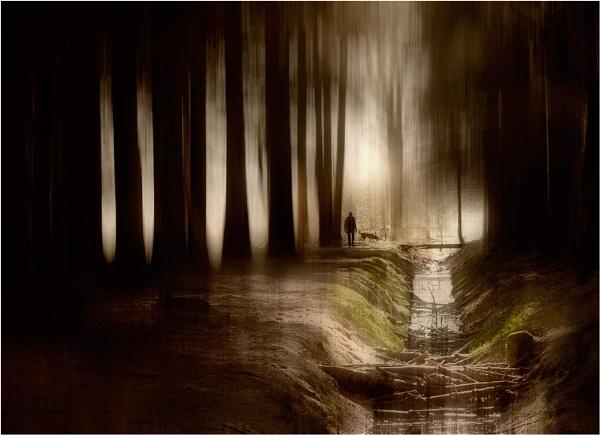 Dark to Light by MalcolmM