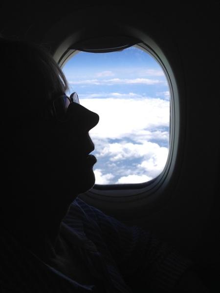 At 38000 ft by DaveWG