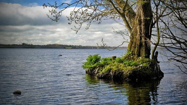 my little island by atenytom